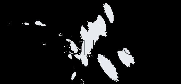 Porsch Stores logo